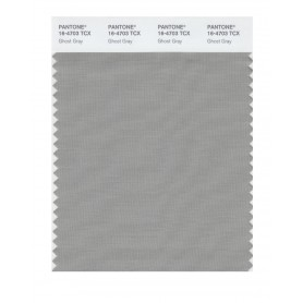 Pantone 16-4703 TCX Swatch Card Ghost Gray