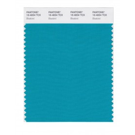 Pantone 16-4834 TCX Swatch Card Bluebird