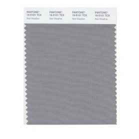 Pantone 16-5101 TCX Swatch Card Wet Weather