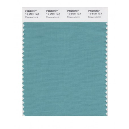 Pantone 16-5121 TCX Swatch Card Meadowbrook