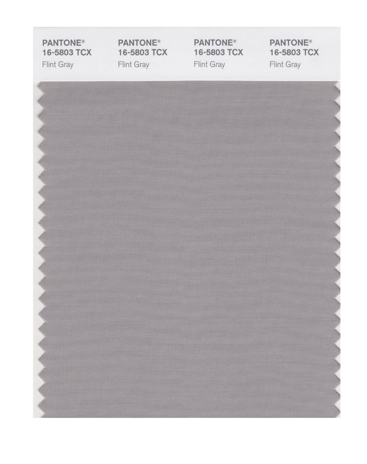 Pantone 16-5803 TCX Swatch Card Flint Gray