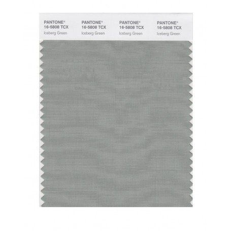 Pantone 16-5808 TCX Swatch Card Iceberg Green