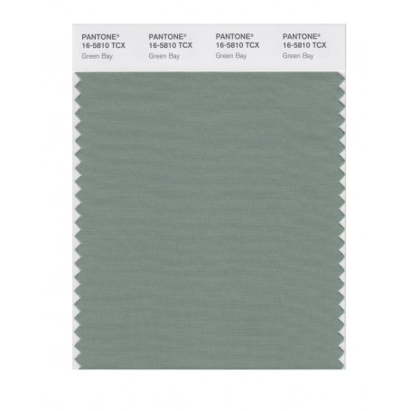 Pantone 16-5810 TCX Swatch Card Green Bay