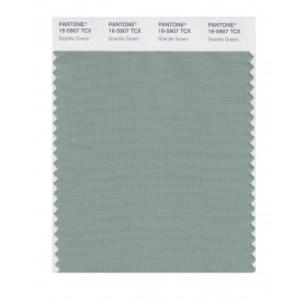Pantone 16-5907 TCX Swatch Card Granite Green