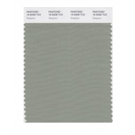 Pantone 16-6008 TCX Swatch Card Seagrass