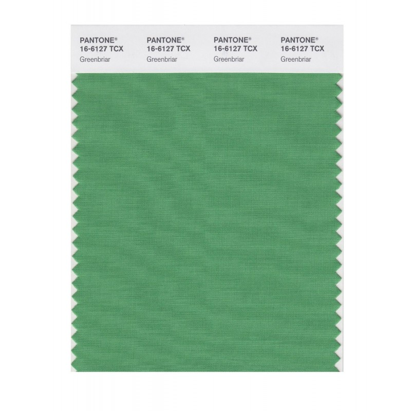 Pantone 16-6127 TCX Swatch Card Greenbriar