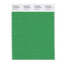 Pantone 16-6138 TCX Swatch Card Kelly Green