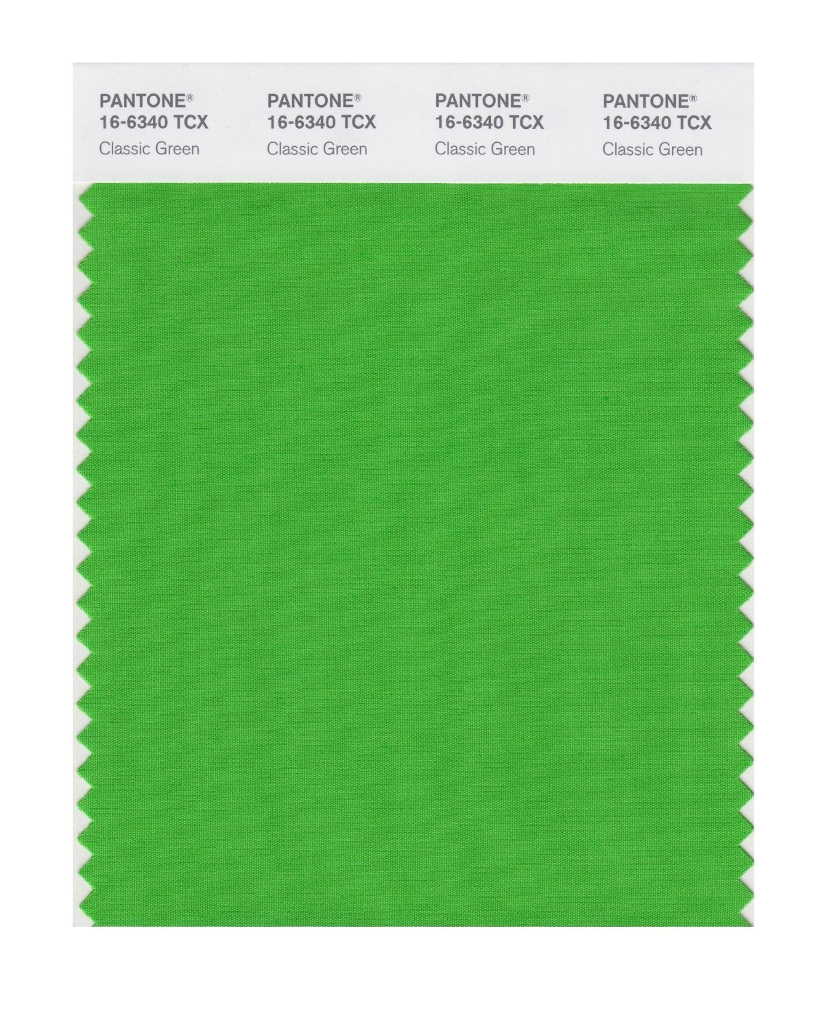 Pantone 16-6340 TCX Swatch Card Classic Green