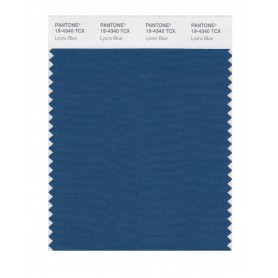 Pantone 19-4340 TCX Swatch Card Lyons Blue