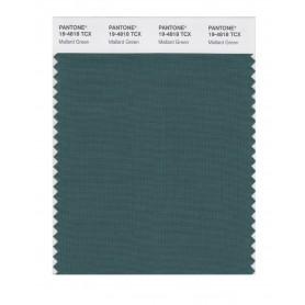 Pantone 19-4818 TCX Swatch Card Mallard Green