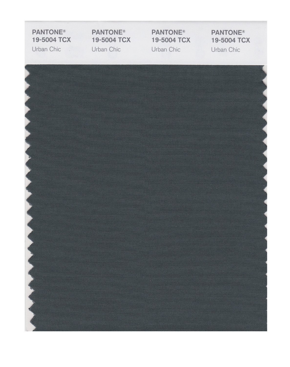 Pantone 19-5004 TCX Swatch Card Urban Chic
