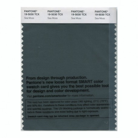 Pantone 19-5030 TCX Swatch Card Sea Moss
