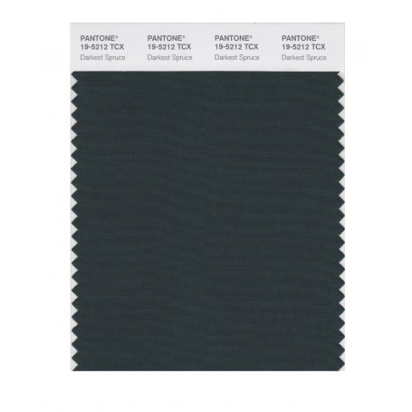 Pantone 19-5212 TCX Swatch Card Darkest Spruce