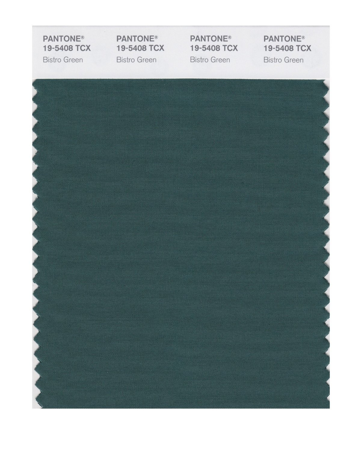 Pantone 19-5408 TCX Swatch Card Bistro Green