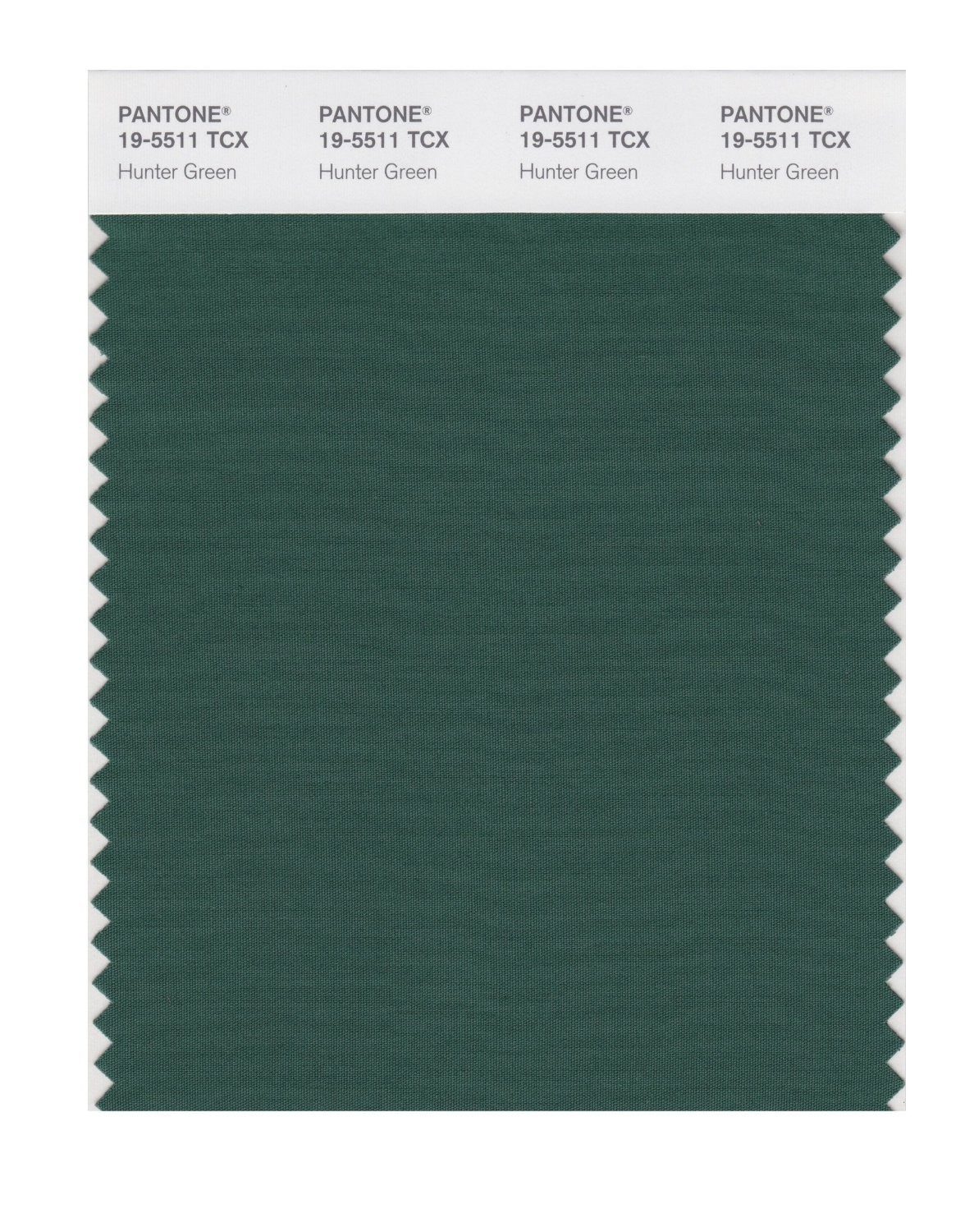 Pantone 19-5511 TCX Swatch Card Hunter Green