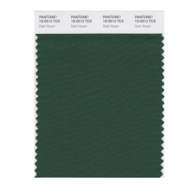 Pantone 19-5513 TCX Swatch Card Dark Green