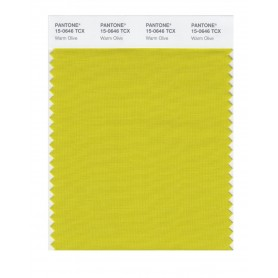 Pantone 15-0646 TCX Swatch Card Warm Olive