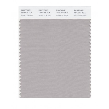 Pantone 15-0703 TCX Swatch Card Ashes Of Roses