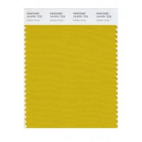 Pantone 15-0751 TCX Swatch Card Lemon Curry