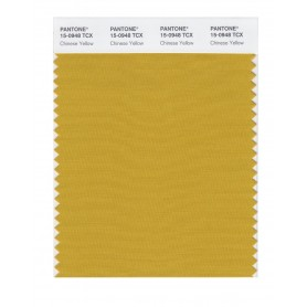 Pantone 15-0948 TCX Swatch Card Golden Spice