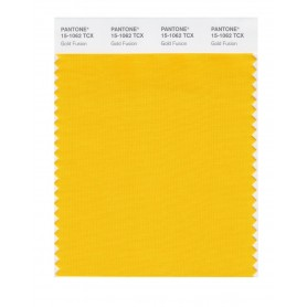 Pantone 15-1062 TCX Swatch Card Gold Fusion