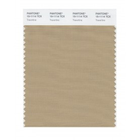 Pantone 15-1114 TCX Swatch Card Travertine