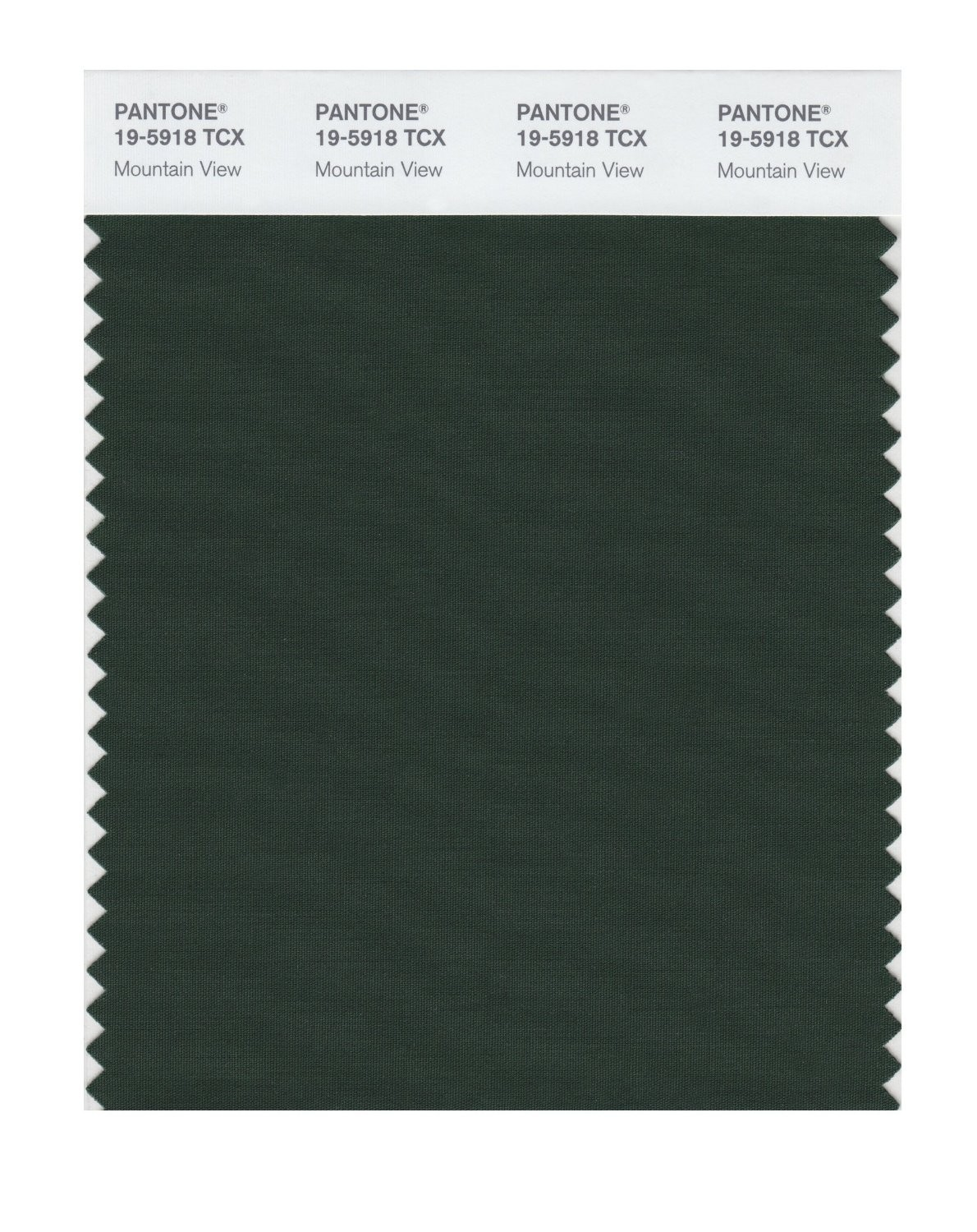 Pantone 19-5918 TCX Swatch Card Mountain View
