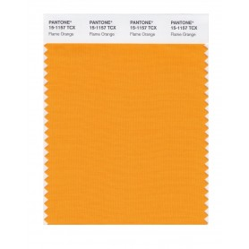 Pantone 15-1157 TCX Swatch Card Flame Orange