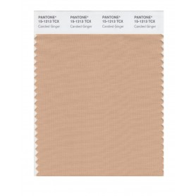 Pantone 15-1213 TCX Swatch Card Candied Ginger