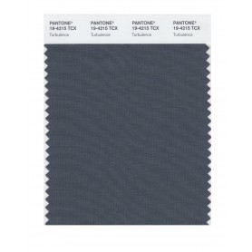 Pantone 19-4215 TCX Swatch Card Turbulence