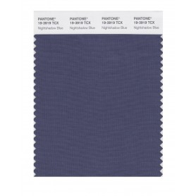 Pantone 19-3919 TCX Swatch Card Nightshadow Blue
