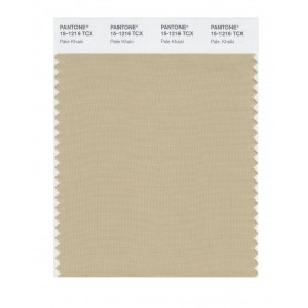 Pantone 15-1216 TCX Swatch Card Pale Khaki