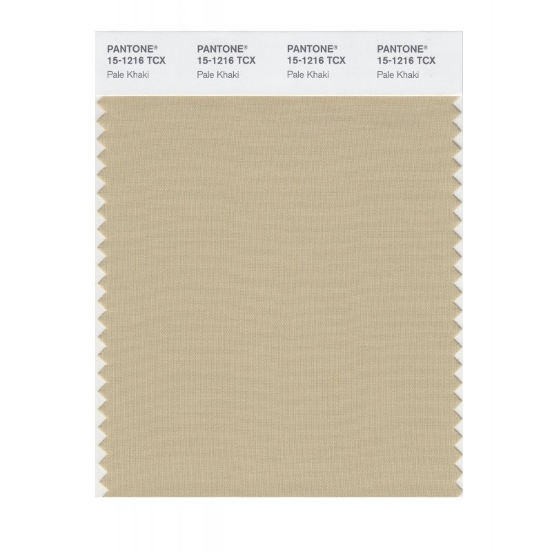 Pantone 15-1216 TCX Swatch Card Pale Khaki Buy in india