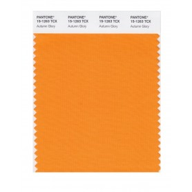 Pantone 15-1263 TCX Swatch Card Autumn Glory