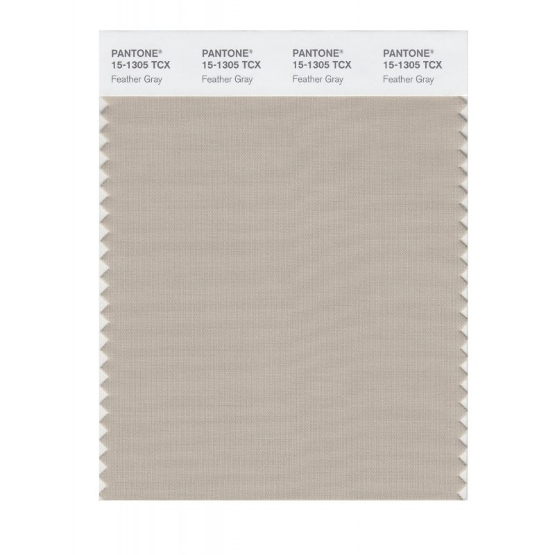 Pantone 15-1305 TCX Swatch Card Feather Gray