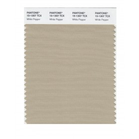 Pantone 15-1307 TCX Swatch Card White Pepper