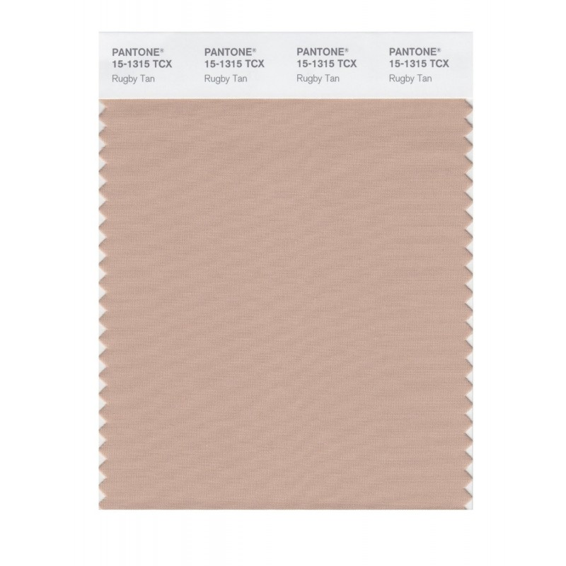 Pantone 15-1315 TCX Swatch Card Rugby Tan Buy in india