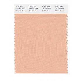 Pantone 15-1319 TCX Swatch Card Almost Apricot