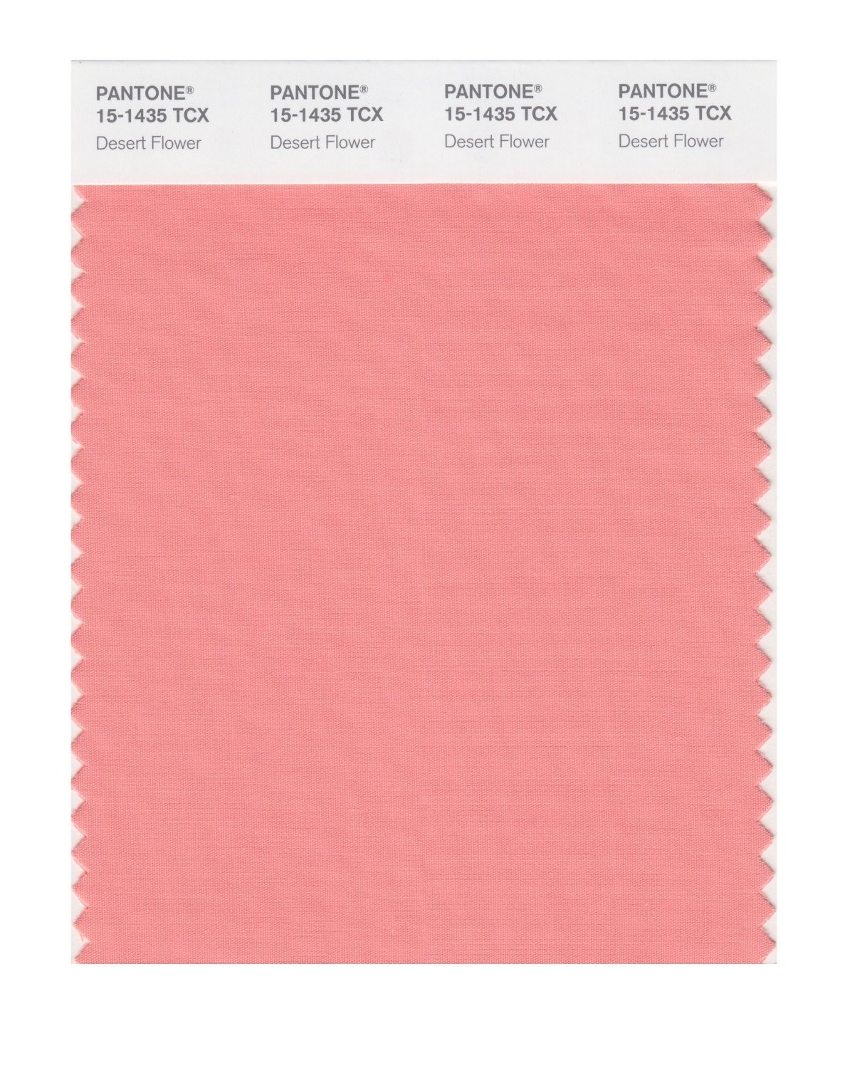 Pantone 15-1435 TCX Swatch Card Desert Flower