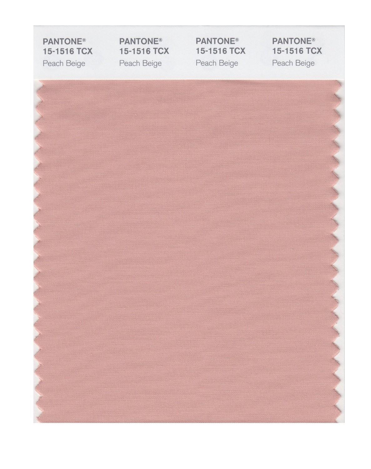 Pantone 15-1516 TCX Swatch Card Peach Beige