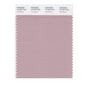 Pantone 15-1607 TCX Swatch Card Pale Mauve