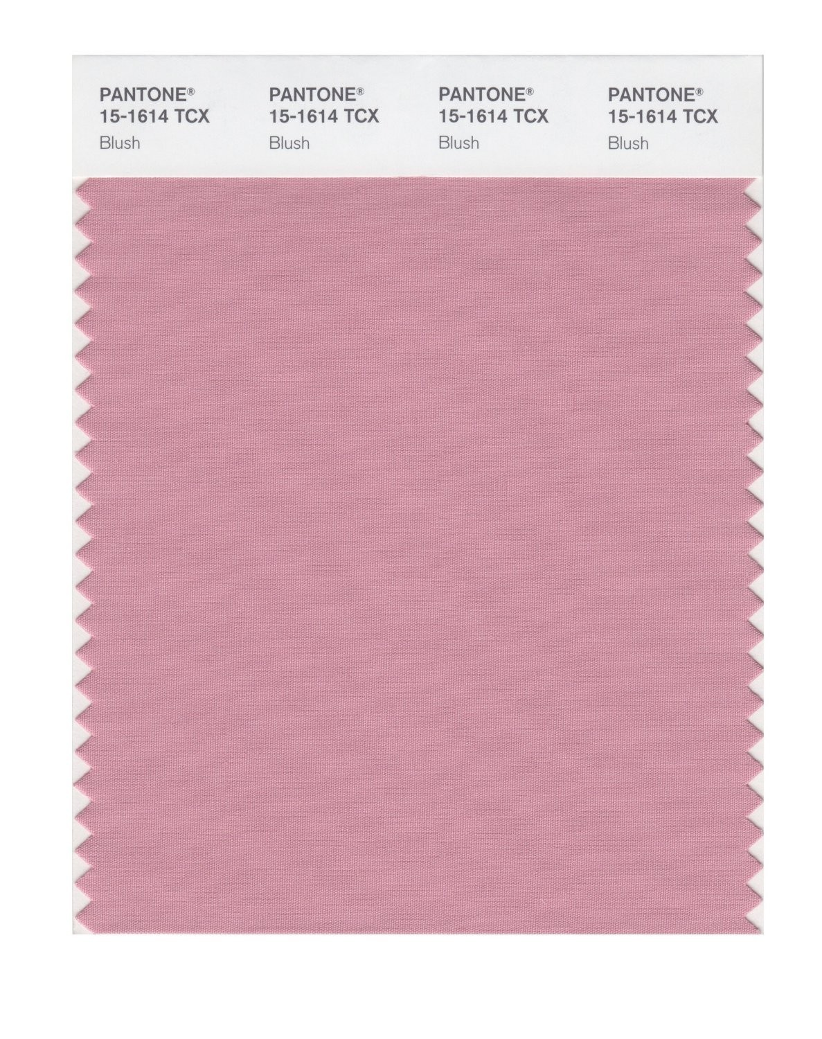 Pantone 15-1614 TCX Swatch Card Blush