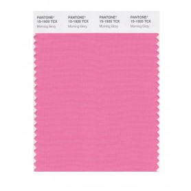 Pantone 15-1920 TCX Swatch Card Morning Glory