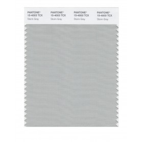 Pantone 15-4003 TCX Swatch Card Storm Gray