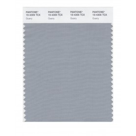 Pantone 15-4305 TCX Swatch Card Quarry