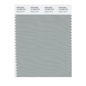 Pantone 15-4306 TCX Swatch Card Belgian Block