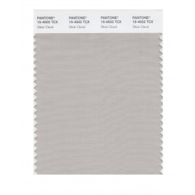 Pantone 15-4502 TCX Swatch Card Silver Cloud