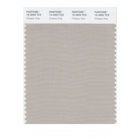 Pantone 15-4503 TCX Swatch Card Chateau Gray
