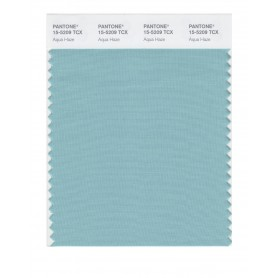 Pantone 15-5209 TCX Swatch Card Aqua Haze