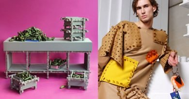Discarded Items Build Your Wardrobe & House